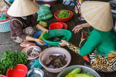Women prepare food at a Mekong Delta market in Nga Bay, Vietnam Stock Photos