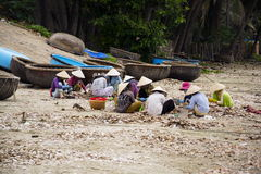 Women processing seashells with fishing boats in background on February 7, 2012 in Mui Ne, Vietnam. Royalty Free Stock Photography