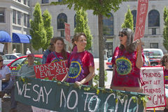 Women Protesting Genetically Modified Foods at a Rally in Ashevi Stock Images