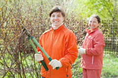 Women pruned branches in  garden Stock Photo