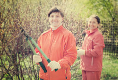 Women pruned branches in  garden Royalty Free Stock Photo