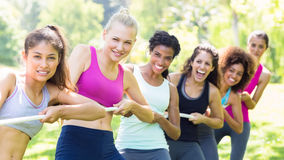 Women pulling a rope in park. Portrait of happy women pulling a rope in tug of war at the park Royalty Free Stock Photos