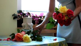 Women putting flowers in vase stock video