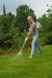 Women raking. Happy young women cleaning the lawn royalty free stock image