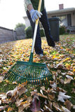 Women Raking Leaves. Photographs of a woman raking autumn leaves in front of a house royalty free stock photography