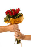 A women receiving red roses from a man. Isolated on a white background Royalty Free Stock Images