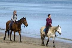 Free Women Ride Horses Royalty Free Stock Photography - 33332987