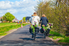 Women riding bicycle with flowers in a basket Stock Image