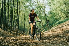 Women is riding on bicycle. In forest or park royalty free stock photography