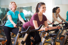Women riding stationary bicycles Royalty Free Stock Photo