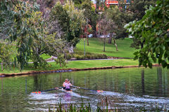 Women rowing a boat on the River Torrens. ADELAIDE,AUSTRALIA - JUNE 7,2014: Two women row a double scull on the River Torrens. The area is also popular with Stock Photography