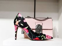 Women`s accessories - gently pink, flesh-colored - shoes, bag. Focus Stock Images