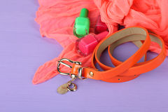Women's accessories Royalty Free Stock Photography