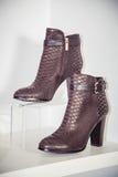 Women's Autumn boots, stylish Italian shoes Royalty Free Stock Photography
