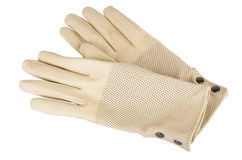 Women's autumn leather gloves Royalty Free Stock Images