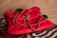 Women's bag Royalty Free Stock Images