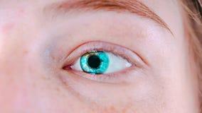 Women`s blue eyes without makeup. Photo eyes macro royalty free stock photo