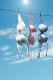 Women's bras drying in the sun. Stock Photos