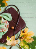 Women's brown leather hand bag, silk neck scarf and yellow maple leaves Stock Images