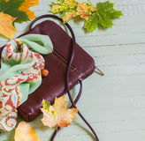 Women's brown leather hand bag, silk neck scarf and yellow maple leaves Royalty Free Stock Images