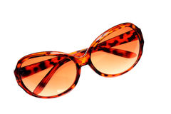 Women's brown sunglasses Stock Image