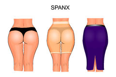 Women's buttocks and thighs to tight underwear. spanx Royalty Free Stock Image