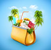 Women`s casual purse Stock Image