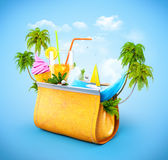 Women's casual purse Stock Images