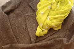 Women`s coat gray color and scarf yellow. Stock Photography