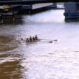 Women's crew. Four women ladies are working as a well trained team crew sculls women rowing sport in fours warm-up on Milwaukee River in collegiate Milwaukee stock photo