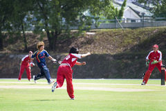 Women's Cricket Action Royalty Free Stock Images