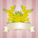 Women's Day background with mimosa flowers Royalty Free Stock Photos