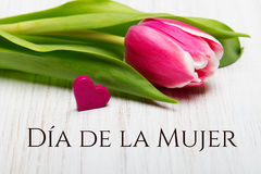 Women`s day card with Spanish words `Día de la Mujer`. Stock Image