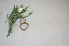 Women`s day. A delicate bouquet for women on international women`s day Stock Image