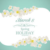 Women`s day greeting card template. In white and green colors Royalty Free Illustration