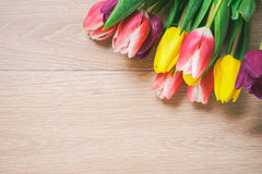 Women`s day 8 march background with spring flowers. Tulips spring frame isolated on bright background Stock Photos
