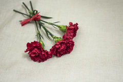 Women`s day. Red flowers in the bouquet for a burning girl as a gift Stock Images