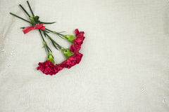 Women`s day. Red flowers in the bouquet for a burning girl as a gift Stock Photos