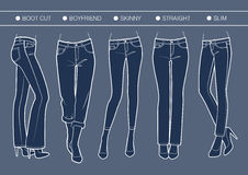 Women's denim fits. Vector trousers' silhouette for various needs vector illustration