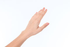 Women`s direct hand in up isolated on white background. Women`s direct hand in hand up isolated on white stock images