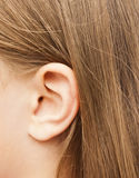 Women`s ear Royalty Free Stock Photos
