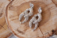 Women's earrings with diamonds. Women's earrings on a tree Stock Photos