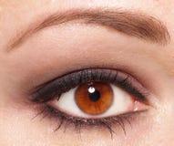 Women's eye. Women eye with make up Royalty Free Stock Image