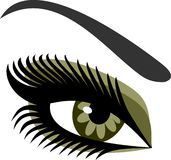 Women's eyes green Royalty Free Stock Images