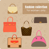 Women's fashion collection of bags Royalty Free Stock Photos