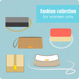 Women's fashion collection of bags Stock Images