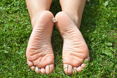 Women's feet Stock Photography