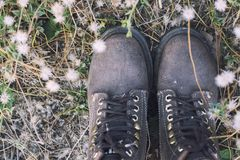 Women`s feet with brown women boots in the flower field. Women`s feet with brown women boots in the flower field background Royalty Free Stock Photos