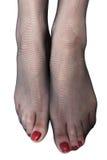 Women`s feet in stockings Stock Photos
