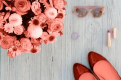 Photos in the color of the year 2019 Living Coral. Fashionable color royalty free stock images